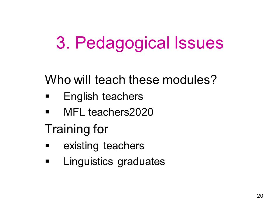 20 3. Pedagogical Issues Who will teach these modules.