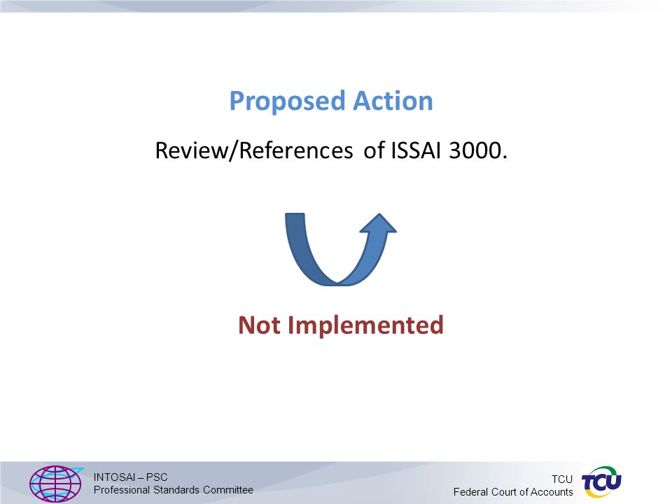 Proposed Action Review/References of ISSAI 3000.