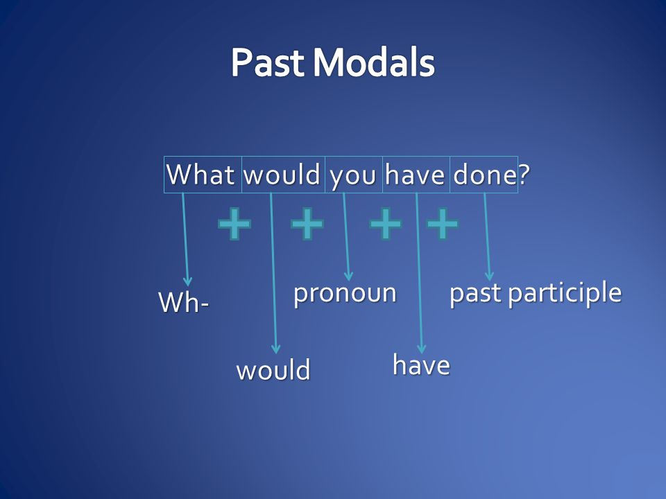 What would you have done? Wh- would pronoun have past participle