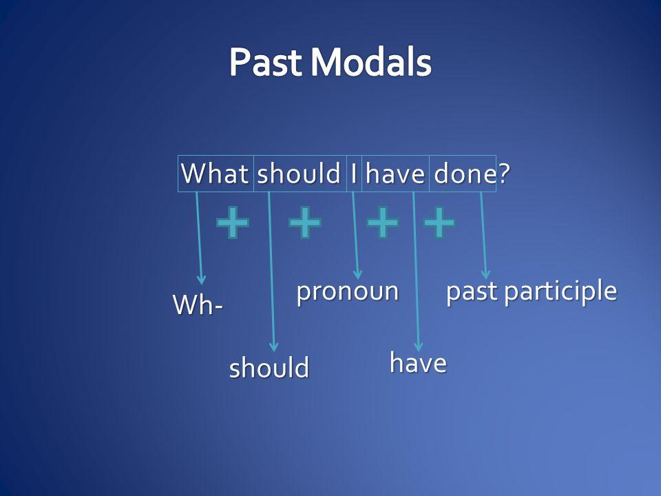 What should I have done? Wh- should pronoun have past participle