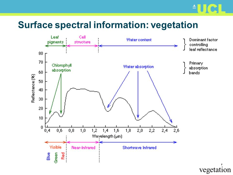 56 Surface spectral information Causes of spectral variation in reflectance? (bio)chemical & structural properties e.g. In vegetation, phytoplankton: