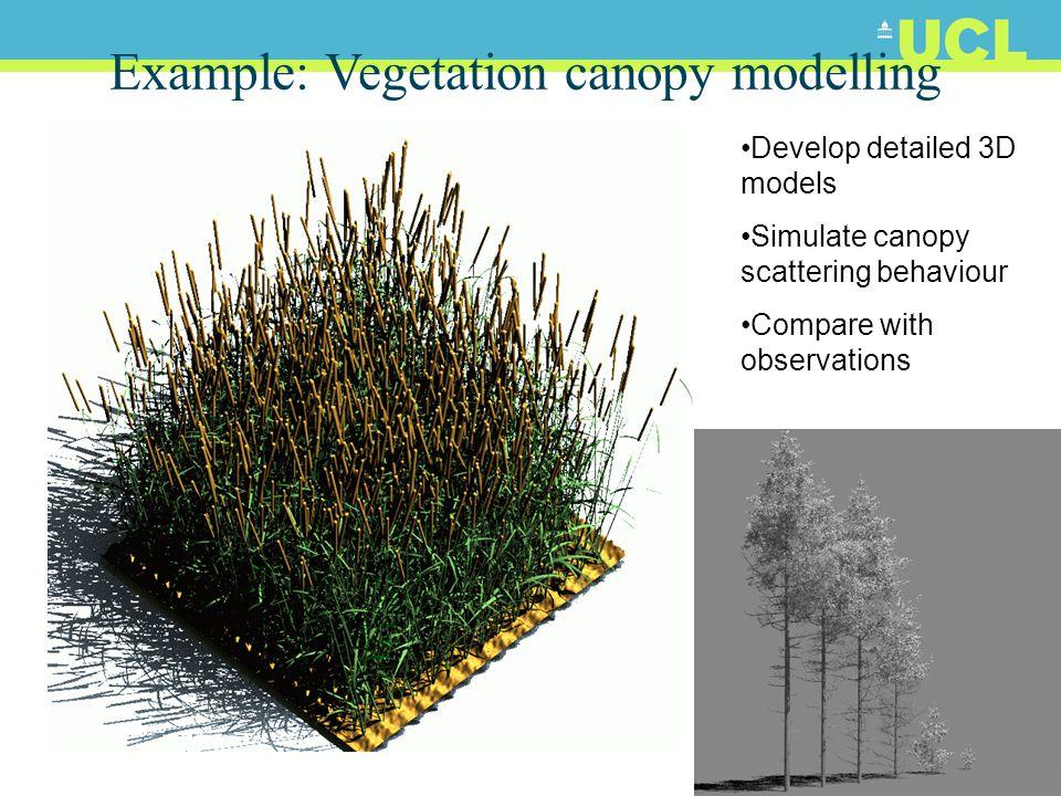 38 Output: above/below canopy signal  Light environment below a deciduous (birch) canopy
