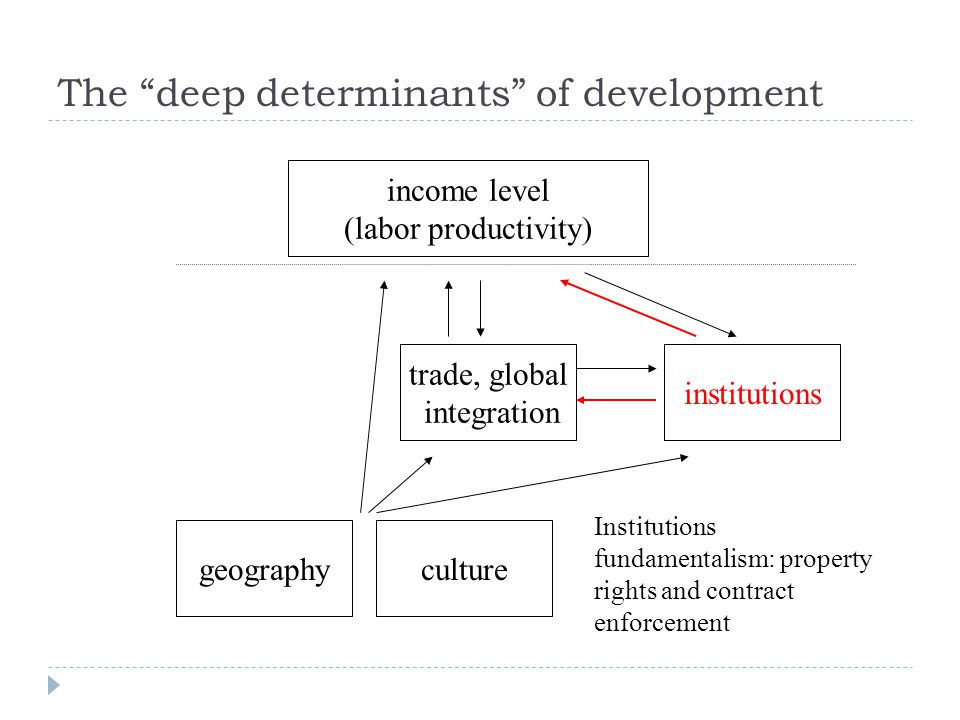 income level (labor productivity) institutions trade, global integration geography Institutions fundamentalism: property rights and contract enforcement culture The deep determinants of development