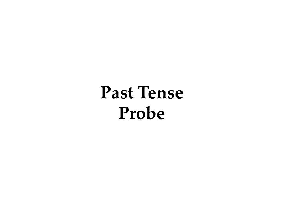 Past Tense Probe