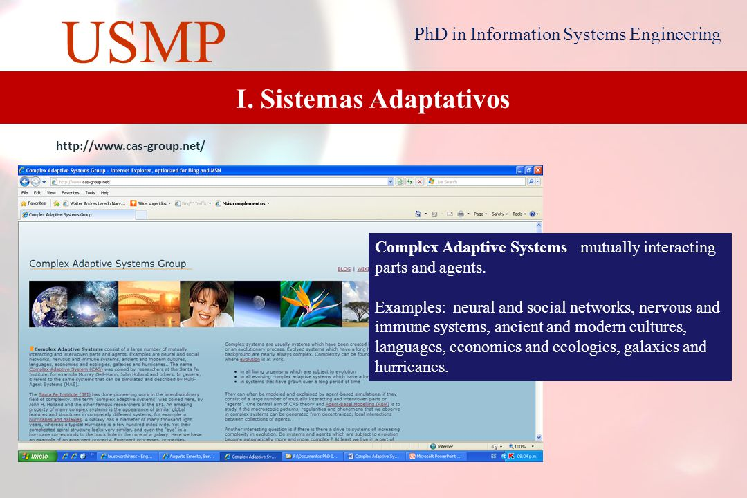 4 USMP PhD in Information Systems Engineering Adaptive systems are today commonly used in finance, industry, consumer products, medicine, science and software detection.