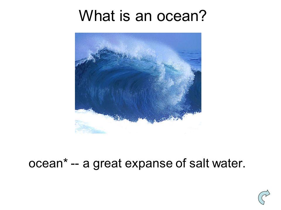 What is an ocean? ocean* -- a great expanse of salt water.