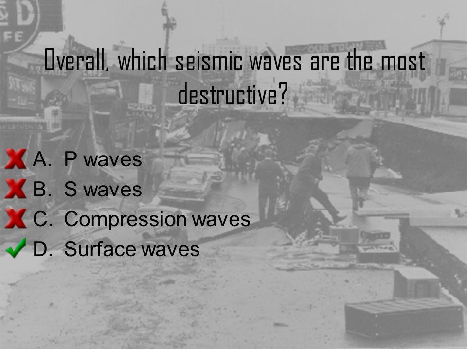 Overall, which seismic waves are the most destructive? A.P waves B.S waves C.Compression waves D.Surface waves