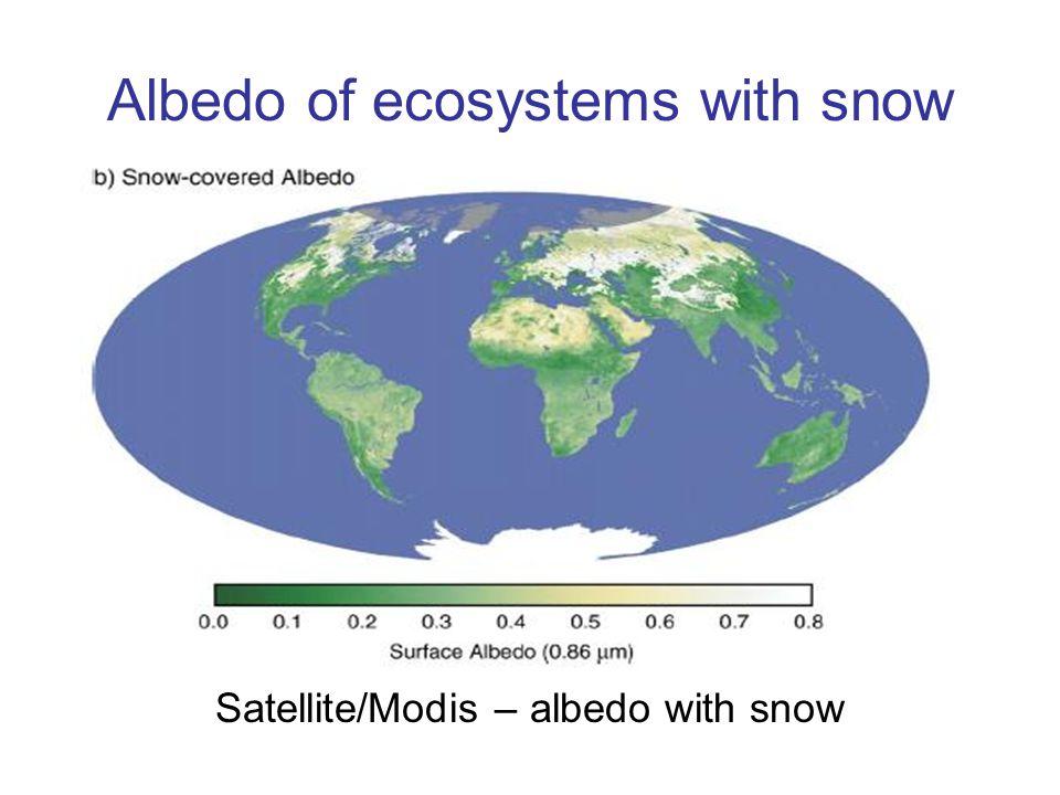 Albedo of ecosystems with snow Satellite/Modis – albedo with snow