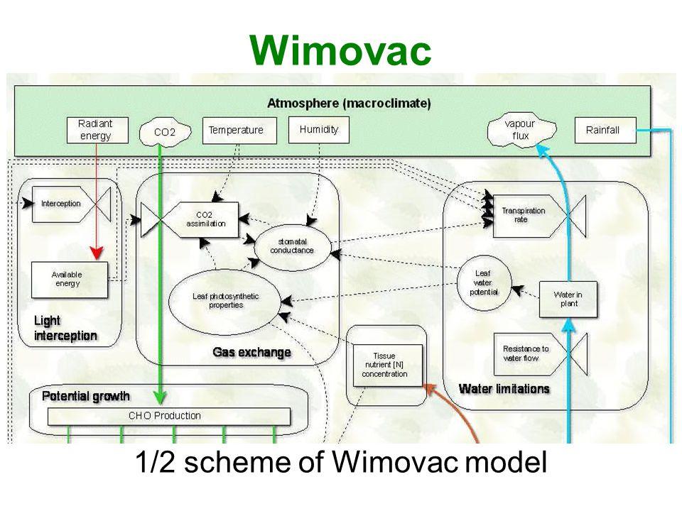 Wimovac 1/2 scheme of Wimovac model