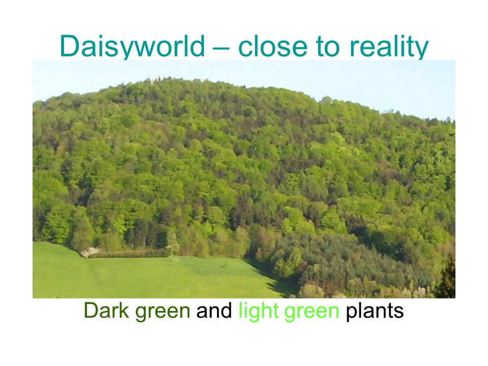 Daisyworld – close to reality Dark green and light green plants