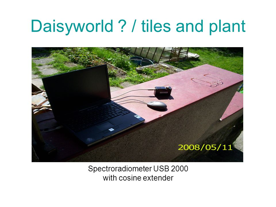 Daisyworld ? / tiles and plant Spectroradiometer USB 2000 with cosine extender