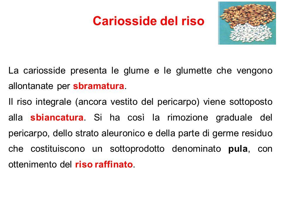 Lavorazione del prodotto Resa di lavorazione = 550-600 kg di riso / t di risone 25% lolla (cellulosa, lignine) 15% altri scarti Risone e riso Risone pulitura sbramatura Riso integrale sbiancatura 3-5 cicli Riso raffinato (Riso semiraffinato, Mercantile, I grado, II grado) Pula Brillatura Oleatura Cernita Chicchi scartati e rotti Semolino Crema di riso Riso