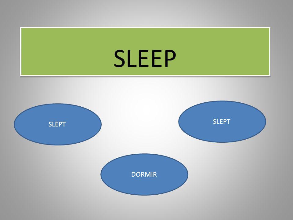 SLEEP SLEPT DORMIR