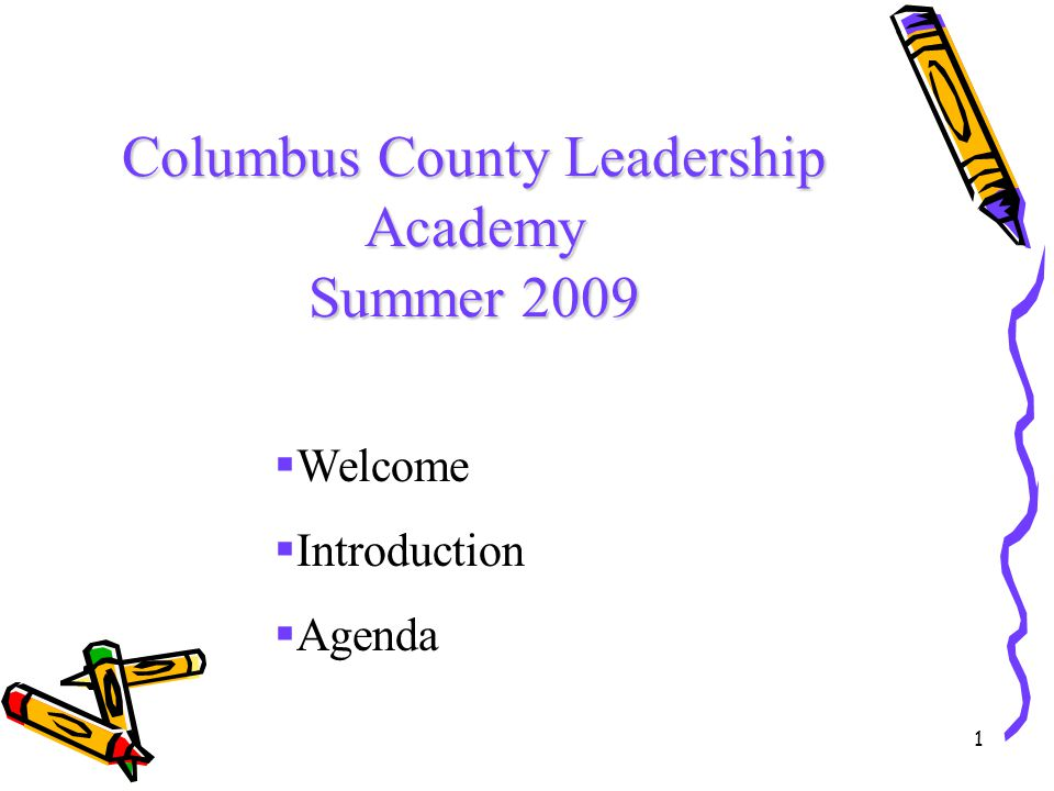 1 Columbus County Leadership Academy Summer 2009  Welcome  Introduction  Agenda