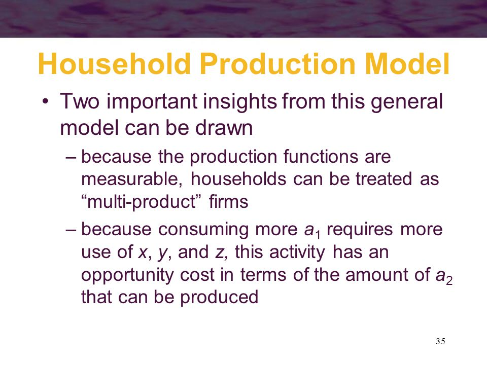 35 Household Production Model Two important insights from this general model can be drawn –because the production functions are measurable, households