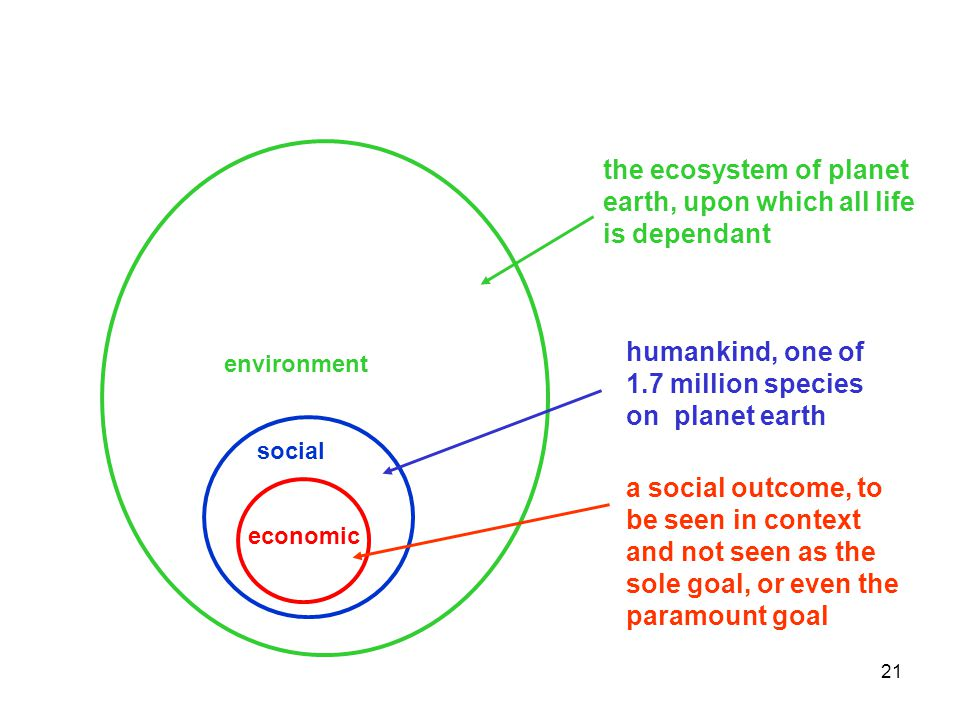 21 social environment economic the ecosystem of planet earth, upon which all life is dependant humankind, one of 1.7 million species on planet earth a social outcome, to be seen in context and not seen as the sole goal, or even the paramount goal