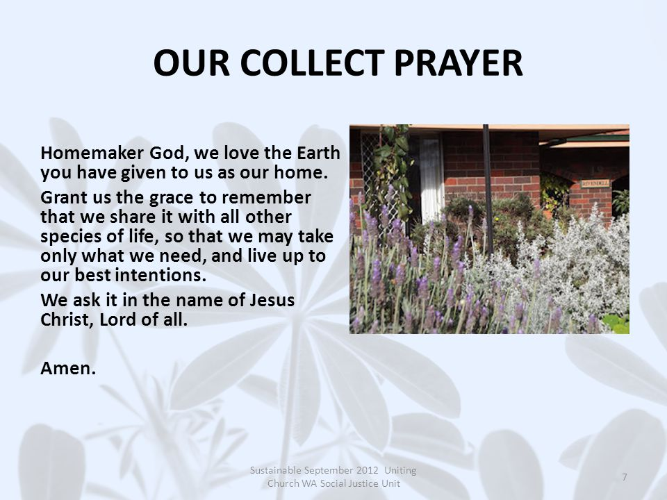 OUR COLLECT PRAYER Homemaker God, we love the Earth you have given to us as our home.