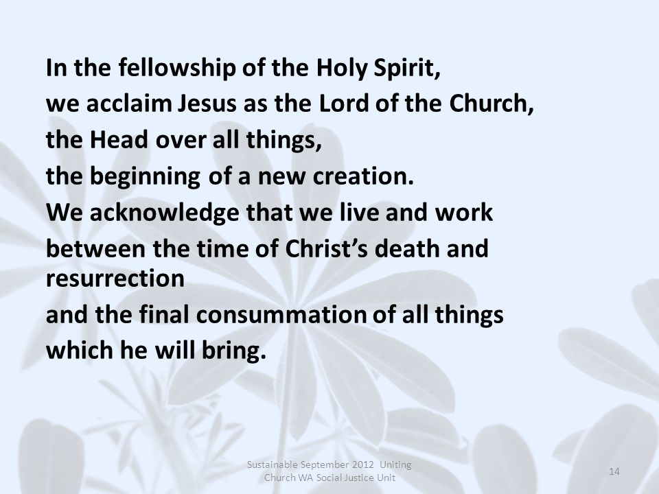 In the fellowship of the Holy Spirit, we acclaim Jesus as the Lord of the Church, the Head over all things, the beginning of a new creation. We acknow