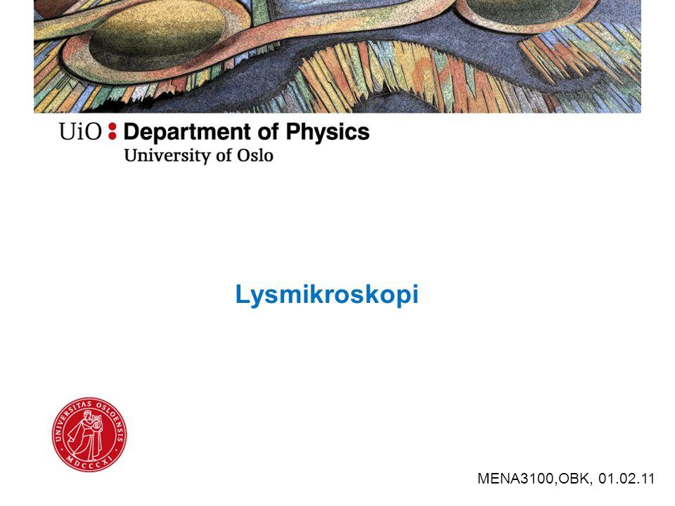Lysmikroskopi MENA3100,OBK, 01.02.11