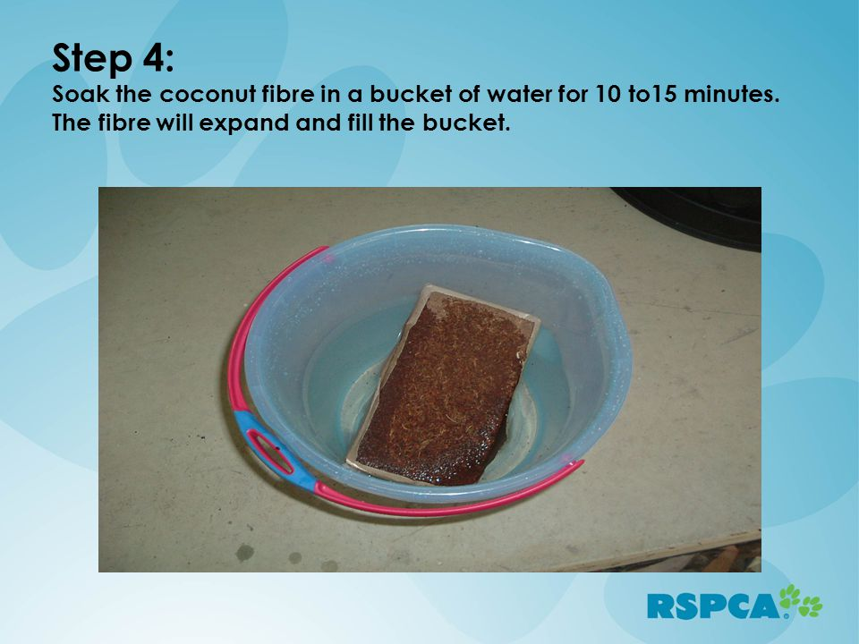 Step 4: Soak the coconut fibre in a bucket of water for 10 to15 minutes.