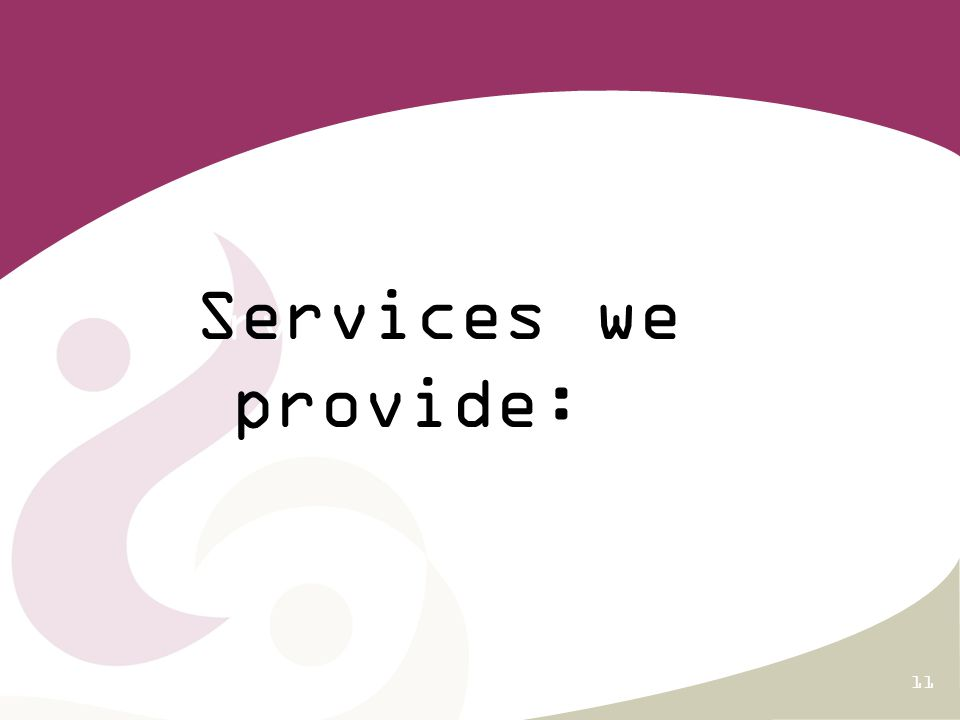 11 Services we provide Services we provide: