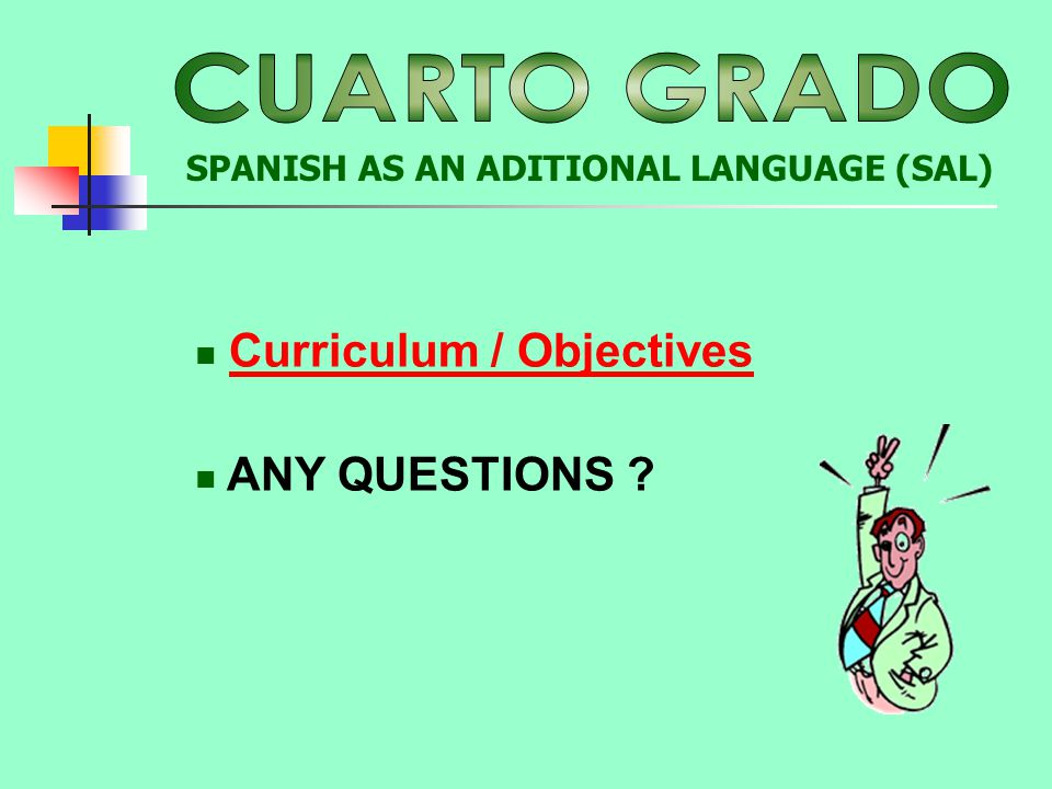 Curriculum / Objectives ANY QUESTIONS ? SPANISH AS AN ADITIONAL LANGUAGE (SAL)