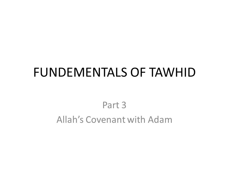 FUNDEMENTALS OF TAWHID Part 3 Allah's Covenant with Adam