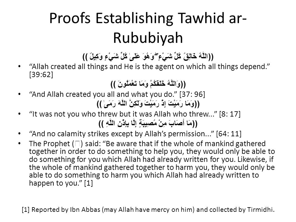 "Proofs Establishing Tawhid ar- Rububiyah ((اللَّهُ خَالِقُ كُلِّ شَيْءٍ ۖ وَهُوَ عَلَىٰ كُلِّ شَيْءٍ وَكِيلٌ )) ""Allah created all things and He is th"