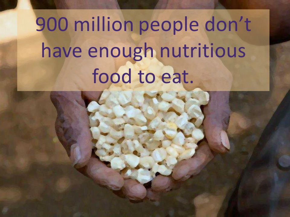 900 million people don't have enough nutritious food to eat.