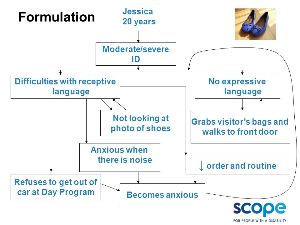Formulation Jessica 20 years Moderate/severe ID No expressive language Difficulties with receptive language Anxious when there is noise ↓ order and routine Refuses to get out of car at Day Program Grabs visitor's bags and walks to front door Not looking at photo of shoes Becomes anxious
