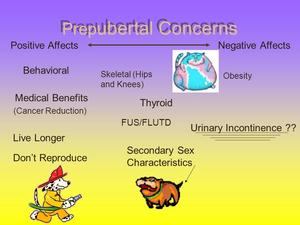 Prep ubertal Concerns Behavioral Obesity Medical Benefits (Cancer Reduction) Secondary Sex Characteristics Positive AffectsNegative Affects Live Longe