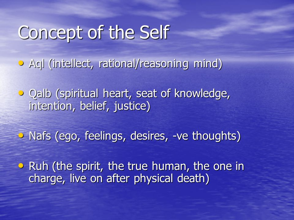 Concept of the Self Aql (intellect, rational/reasoning mind) Aql (intellect, rational/reasoning mind) Qalb (spiritual heart, seat of knowledge, intent