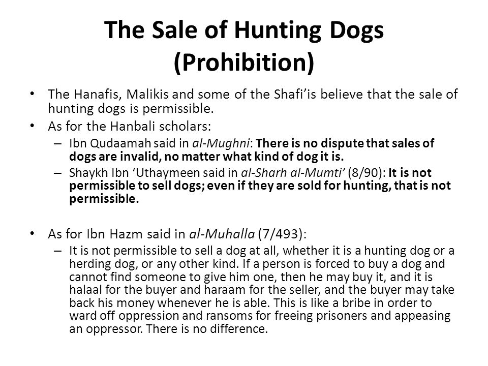 The Sale of Hunting Dogs (Prohibition) The Hanafis, Malikis and some of the Shafi'is believe that the sale of hunting dogs is permissible.