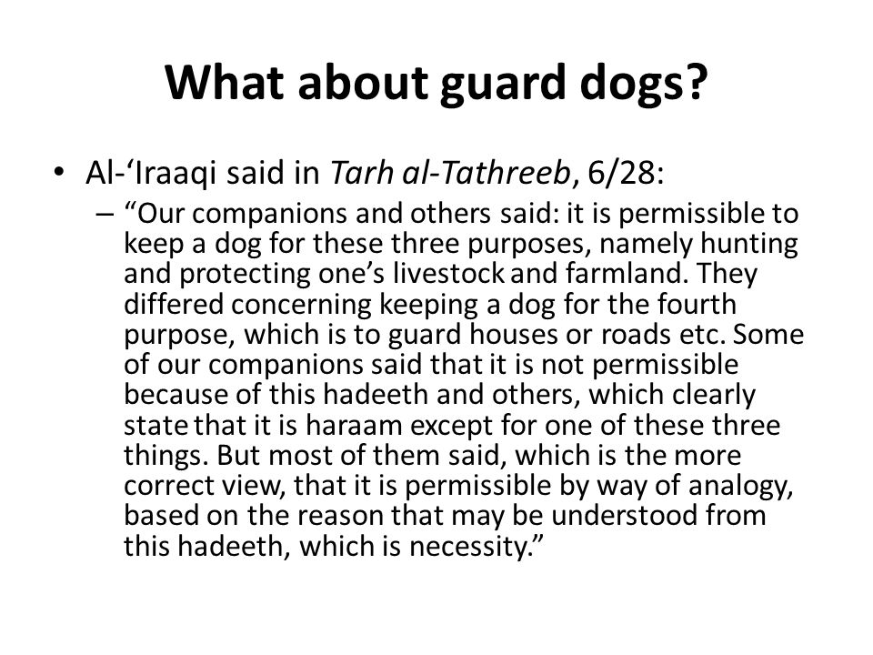 What about guard dogs.