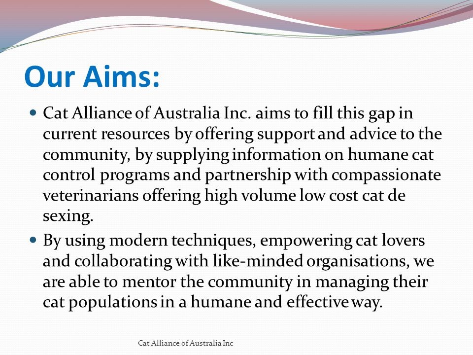 Our Aims: Cat Alliance of Australia Inc. aims to fill this gap in current resources by offering support and advice to the community, by supplying info