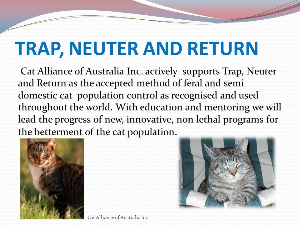 TRAP, NEUTER AND RETURN Cat Alliance of Australia Inc.