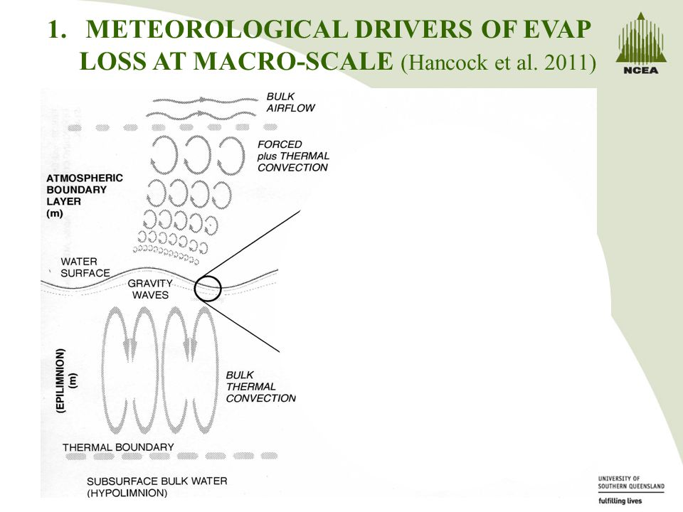 1.METEOROLOGICAL DRIVERS OF EVAP LOSS AT MACRO-SCALE (Hancock et al. 2011)