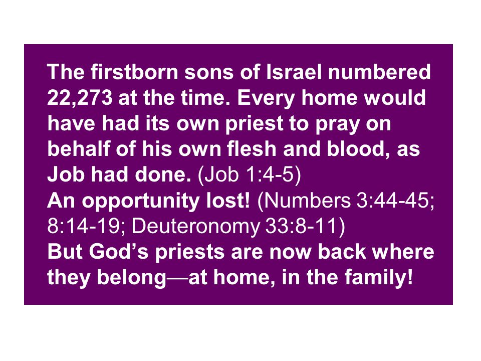 The firstborn sons of Israel numbered 22,273 at the time.