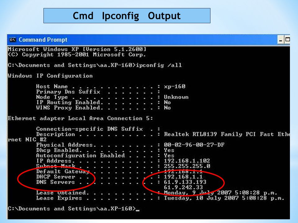 Cmd Ipconfig Output