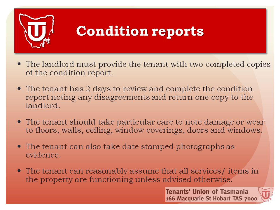 Condition reports The landlord must provide the tenant with two completed copies of the condition report.