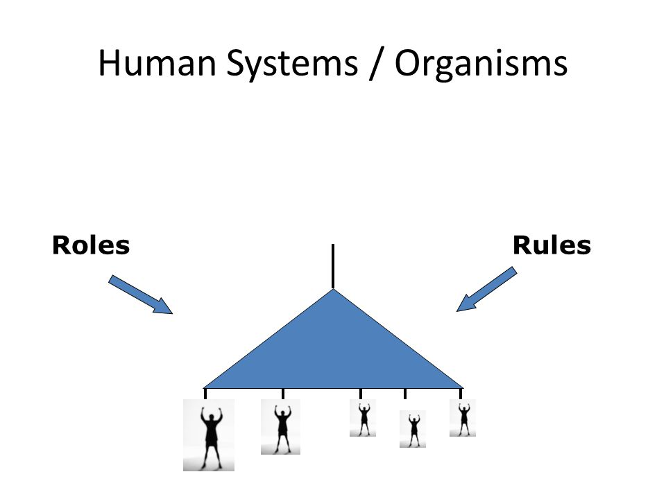 Human Systems / Organisms RolesRules
