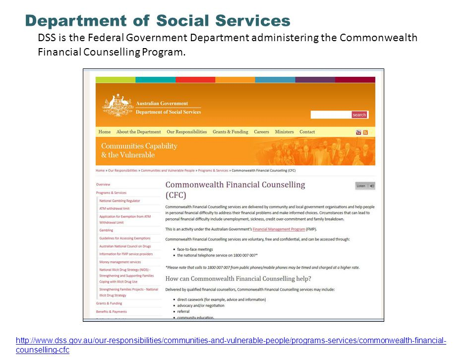 Department of Social Services 11 DSS is the Federal Government Department administering the Commonwealth Financial Counselling Program.