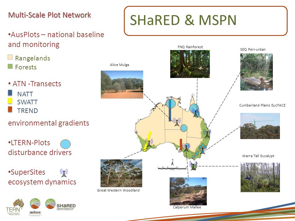 Multi-Scale Plot Network AusPlots – national baseline and monitoring ATN -Transects environmental gradients LTERN-Plots disturbance drivers SuperSites ecosystem dynamics NATT SWATT TREND Rangelands Forests FNQ Rainforest Calperum Mallee SEQ Peri-urban Great Western Woodland Warra Tall Eucalypt Cumberland Plains EucFACE Alice Mulga SHaRED& MSPN