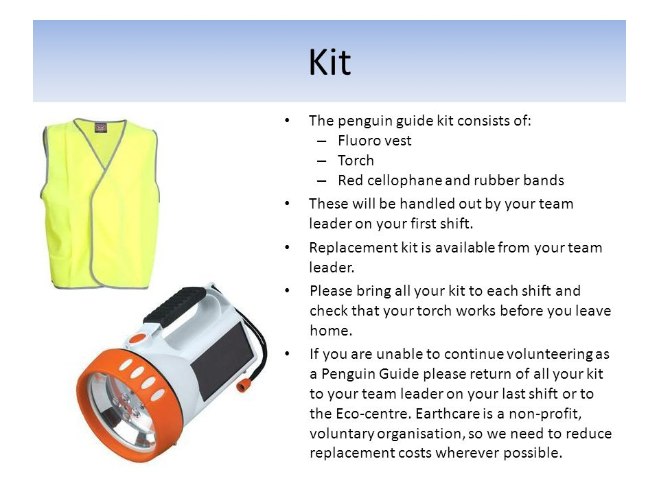 Kit The penguin guide kit consists of: – Fluoro vest – Torch – Red cellophane and rubber bands These will be handled out by your team leader on your f