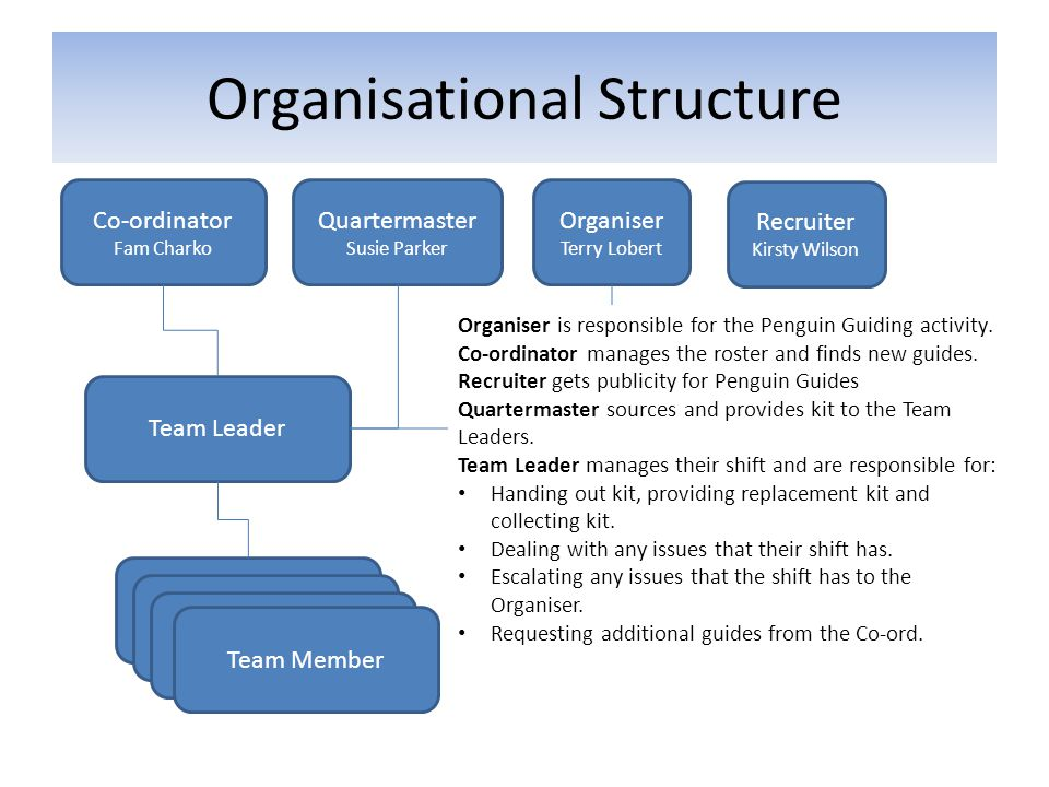 Organisational Structure Co-ordinator Fam Charko Organiser Terry Lobert Team Leader Team Member Quartermaster Susie Parker Organiser is responsible fo