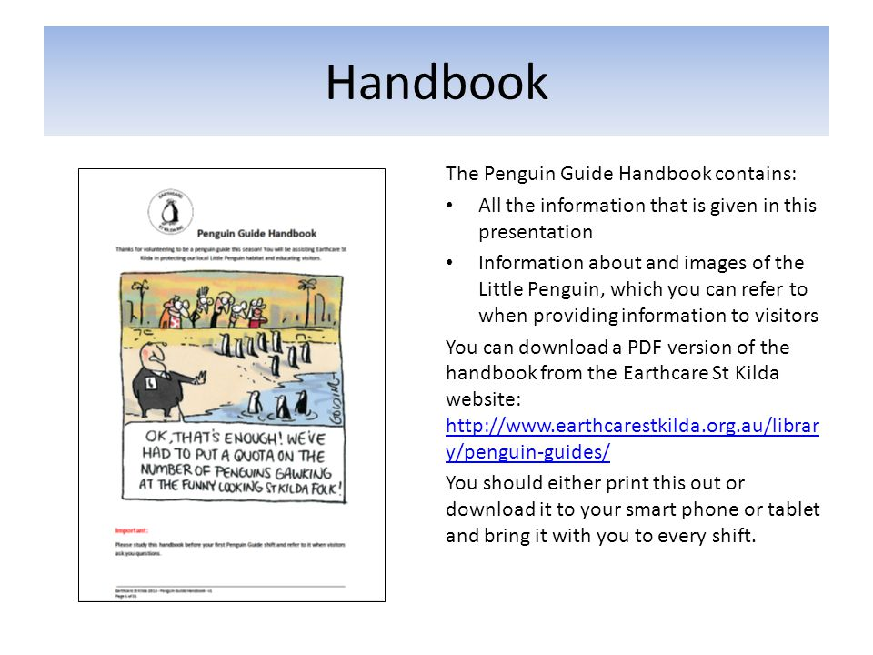 Handbook The Penguin Guide Handbook contains: All the information that is given in this presentation Information about and images of the Little Pengui