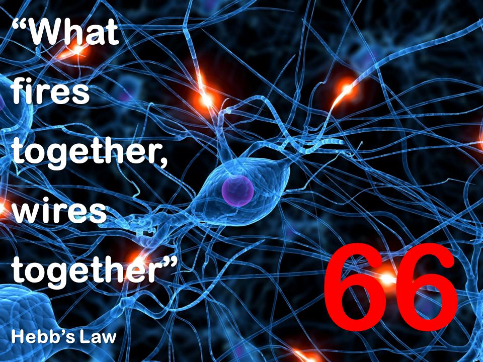 Whatfirestogether,wirestogether Hebb's Law 66