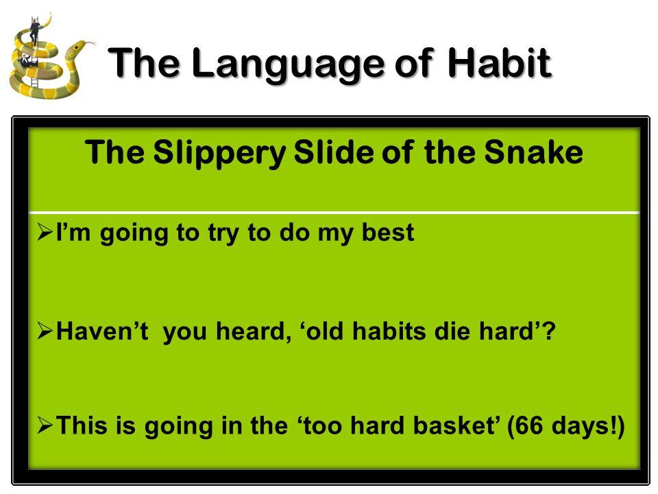 Bb M The Language of Habit