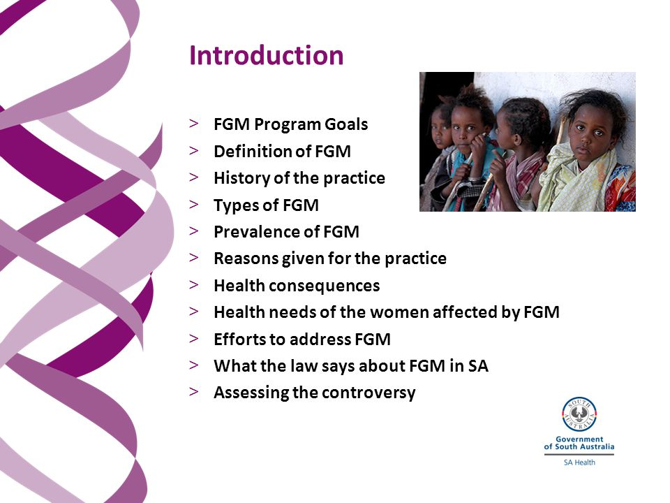Introduction > FGM Program Goals > Definition of FGM > History of the practice > Types of FGM > Prevalence of FGM > Reasons given for the practice > Health consequences > Health needs of the women affected by FGM > Efforts to address FGM > What the law says about FGM in SA > Assessing the controversy