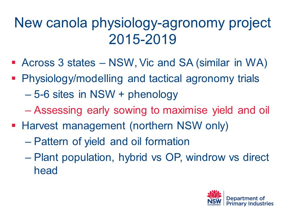 New canola physiology-agronomy project 2015-2019  Across 3 states – NSW, Vic and SA (similar in WA)  Physiology/modelling and tactical agronomy trials –5-6 sites in NSW + phenology –Assessing early sowing to maximise yield and oil  Harvest management (northern NSW only) –Pattern of yield and oil formation –Plant population, hybrid vs OP, windrow vs direct head